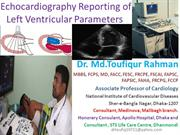 Echo reprting of left ventricle parameters