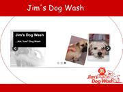 Jim's Dog Wash - Overview