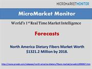 North America Dietary Fibers Market-copy.pptx