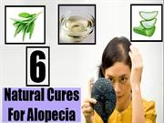 6 Natural Cures For Alopecia