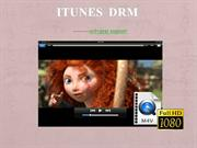 Talking about DRM from iTunes