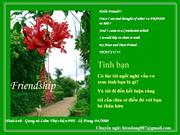 Tinh_Ban_3(2)