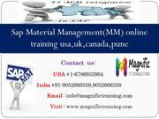 Sap Material Management(MM) online training usa,uk,canada,pune