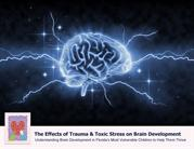The Effects of Trauma & Toxic Stress on Brain Development