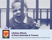The Lifetime Effects of Early Adversity & Trauma
