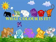 COLOURS (ELEPHANTS)