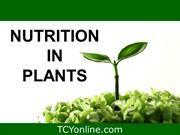 AUGUST - nutrition in plants_navdayal_AUG (23)