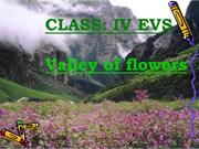 11 THE VALLEY OF FLOWERS QUIZ