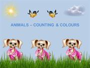 ANIMALS – COUNTING & COLOURS