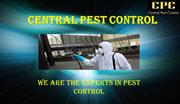 Find the pest control services in London|Central Pest Control London