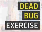 Dead Bug Exercise for Strong Abs & Proper Posture
