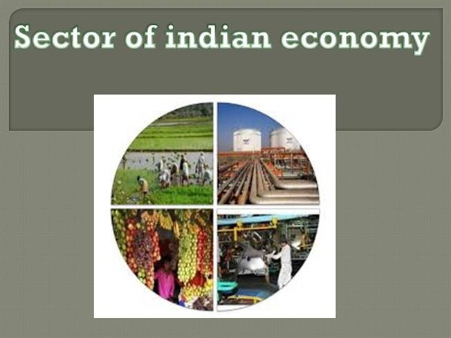 describe different sectors of indian economy