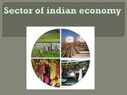 sector of indian economy