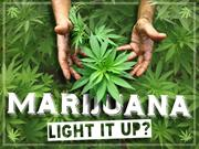 MARIJUANA - LIGHT IT UP? @empoweredpres