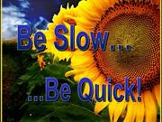 Be slow be quick