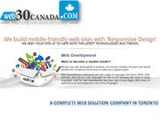 Web Development, Web Designing & Internet Marketing Services - web30ca