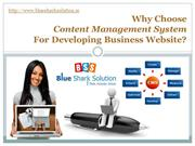 Why choose CMS for developing business website ?