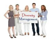 Diversity-Management-Demo