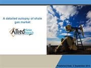 A detailed autopsy of shale gas market