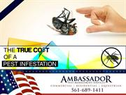 The True Cost of a Pest Control in Stuart FL