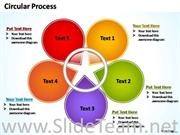 5 Staged Flower Petal Chart