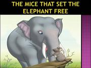 THE MICE THAT SET THE ELEPHANT FREE