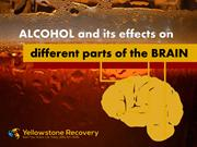Alcohol and its effects on different parts of the brain