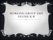 Working group and feline K-R