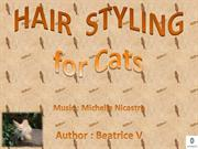 HAIR  STYLING for Cats