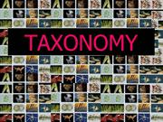 Intro to Taxonomy