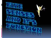 Five Senses and it's Purpose