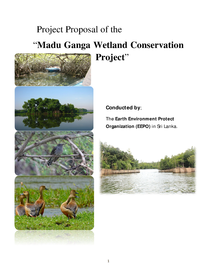 wetland essay Wetlands are categorized by their characteristic vegetation, which is adapted to these unique soil conditions the climate of a wetland depends on where the location is many of the wetlands are in temperate zones (midway between the north and south pole and the.