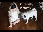 Pug Dogs and a Baby - Cute Pictures
