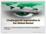 Challenges of Organization in global market