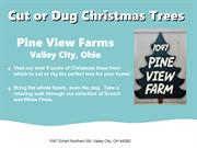 Christmas Trees Medina County Ohio Overview