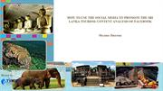 HOW TO USE THE SOCIAL MEDIA TO PROMOTE THE SRI LANKA TOURISM