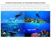 Andaman Scuba Diving – A Transcendent Adventure Sport