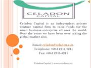 Looking For Private Equity Firm Malaysia - Celadon Capital