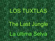 México -Los Tuxtlas, The Last Jungle