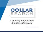 Collar Search Oct