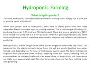 Hydroponic Gardening – Benefits Are Endless