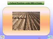 Cultural practices in potato_1 (1)