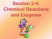 Chemical Reactions and Enzymes PowerPoint