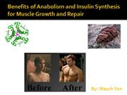 Benefits to Anabolism and Insulin Synthesis for Muscle Growth & Repair