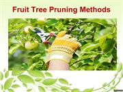 Fruit Tree Pruning Methods