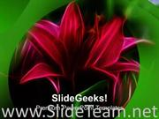RED LILY FLOWER GREEN BACKGROUND POWERPOINT TEMPLATE