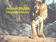 Animal Rights Organisations - ForTheLoveOfWildLife