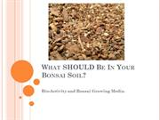 What SHOULD Be In Your Bonsai Soil