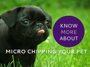 Track your lost pet with Micro Chipping