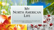 My North American Life (Visiting Scholar in Chile=